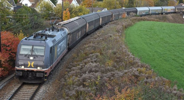 Train on a railway surrounded by houses, bushes and green grass
